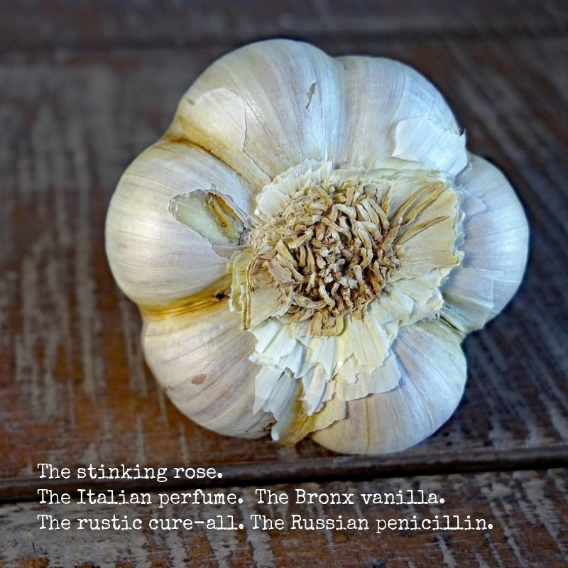 Garlic nicknames